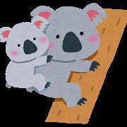 animal_koala_oyako